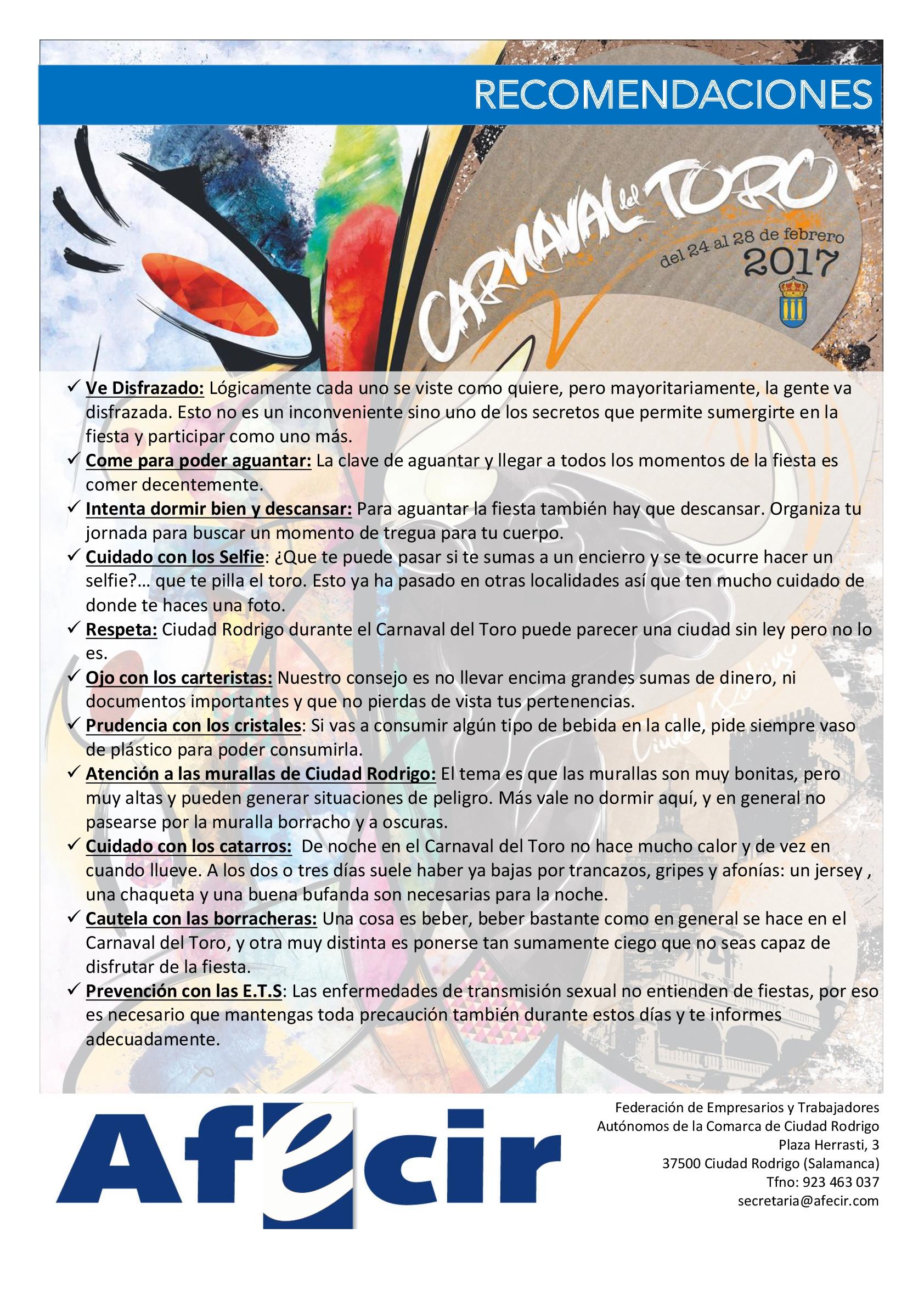 Cartel Afecir Carnaval del Toro-001